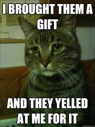 Gift Meme - i brought them a gift and they yelled at me for it depressed cat
