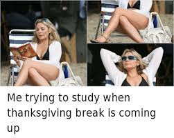 me trying to study when thanksgiving is coming up