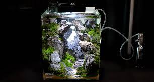 membuat aquascape bening backyard aquascap aquascapes pond aquascap air terjun membuat