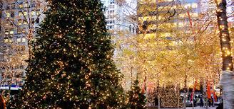 best christmas tree manhattan living best christmas trees in nyc manhattan living