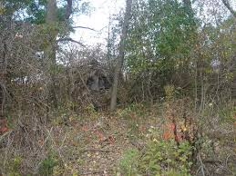 Bow Hunting From Ground Blind Brushing In The Ground Blind