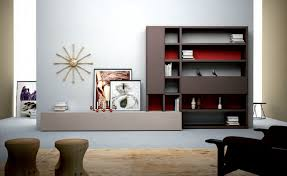 Modern Wall Units For Living Room Fionaandersenphotographycom - Living room unit designs