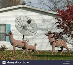 lawn ornaments indiana plastic deer satellite dish communications