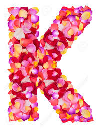 letter k made from colorful petals rose isolated on a white