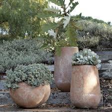 Concrete Planter Boxes by Best 25 Large Concrete Planters Ideas On Pinterest Concrete