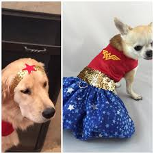 dog clothes for halloween wonder woman dog costume super hero costume halloween dog