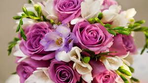 Nice Flowers Incredible Pictures Flowers