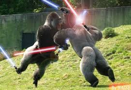 Gorilla Warfare Meme - gorilla warfare bodybuilding com forums