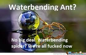 Funny Spider Meme - waterbending spider memes best collection of funny waterbending