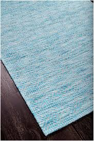 aqua colored rug roselawnlutheran