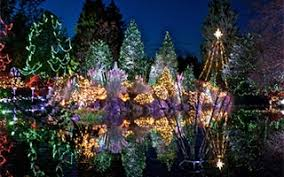 Vandusen Botanical Garden Lights Festival Of Lights At Vandusen Botanical Garden Canada Week