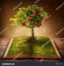 tree knowledge growing out book stock photo 91985648