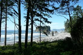 Washington beaches images The 10 best beaches in washington state for 2017 jpg