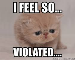 I Feel Violated Meme - i feel so violated super sad cat meme generator