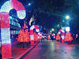 zona rosa tree lighting getting ready for christmas in zona rosa picture of bogota