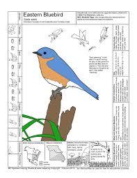 missouri species coloring sheets