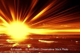 what day did god create light why did god create plant life before the sun genesis and genetics