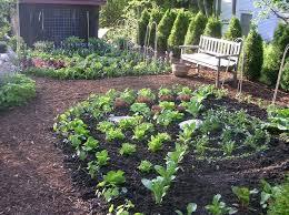 Rock Vegetable Garden Outdoor Garden Inspiring Vegetable Garden Design Ideas