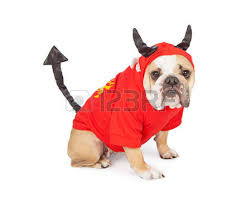three cute little puppy dogs dressed up in halloween costumes