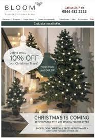 the 7ft greenland pine tree 149 seasonal pine