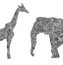 100 home design animal print decor zebra print decor in