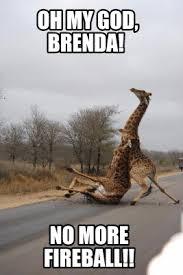 Brenda Memes - meme maker oh my god brenda no more fireball