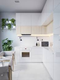 design white minimalist kitchen hanging pot plants wooden accent