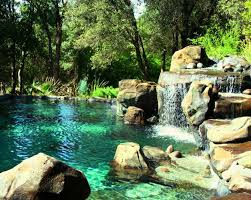 natural swimming pool ideas for small backyard home interior