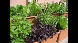 creative small kitchen garden design youtube