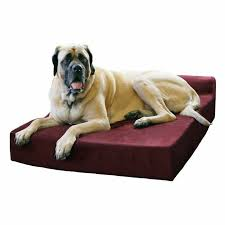 pillow top dog bed big barker 7 inch pillowtop orthopedic dog bed headrest edition
