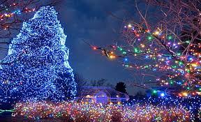 horseshoe christmas tree lucky christmas ideas
