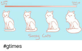 Sassy Cat Meme - a little sassy cats lord of sass gtimes cats meme on me me