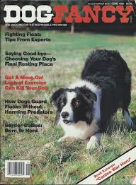 5280 australian shepherd herding dogs video series on dvd home facebook
