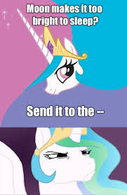 Princess Celestia Meme - pin by anna uzel on mlp memes pinterest mlp memes mlp and