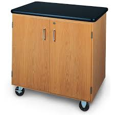 24 Drawer Storage Cabinet by Mobile Lab Cabinet 36