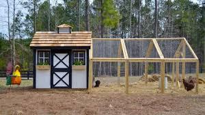 How To Build A Backyard How To Build A Backyard Chicken Coop Homesteading