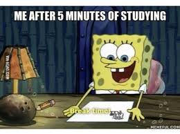 Funny Study Memes - spongebob studying shared by katharina খ শ