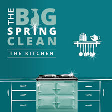 Ultimate Guide To Cleaning Kitchen by The Big Spring Cleaning Series Kitchen Guide
