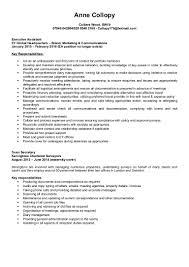 100 what zuckerberg u0027s resume might look like business