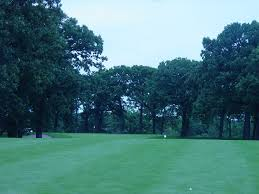 timber trails chicago golf report