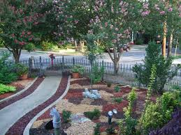 out with the grass in with xeriscapes san antonio express news