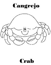 imagenes animales acuaticos para colorear imagenes de animales marinos para colorear