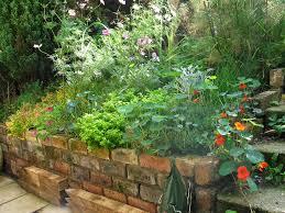 triyae com u003d backyard herb garden design various design