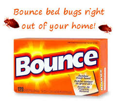What Kills Bed Bugs For Good Bed Bugs Are Becoming A Growing Problem All Around The United