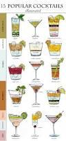 1740 best drinks u0026 dips images on pinterest party drinks summer