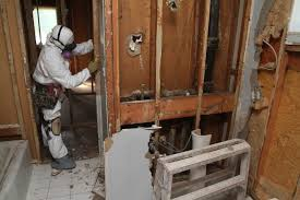 How To Prevent Mold In Bathroom Good Bathroom Insulation Prevents Mold Rot Angie U0027s List
