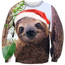 20 best hoodies images on beloved shirts baby sloth