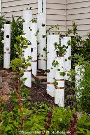vertical gardening pvc pipe with vegetables and copper strips for