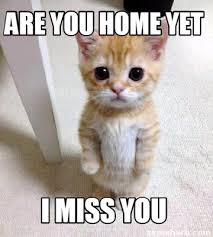Miss You Memes - meme creator are you home yet i miss you meme generator at
