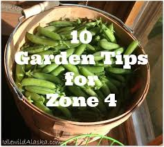 Garden Planting Zones - best 25 gardening zones ideas on pinterest fall planting